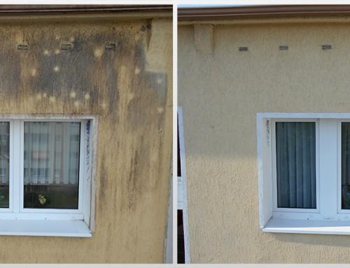 Fassadenreinigung 08